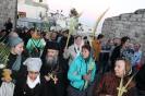 2014-2015 учебный год :: крестный ход на Вход Господень в Иерусалим